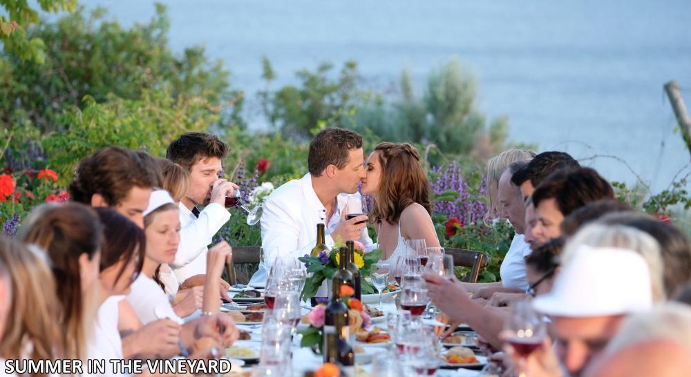 Highschool Sweethearts - Summer in the Vineyard